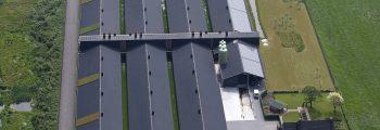 Opening vermeerderingsbedrijf Dellerweg